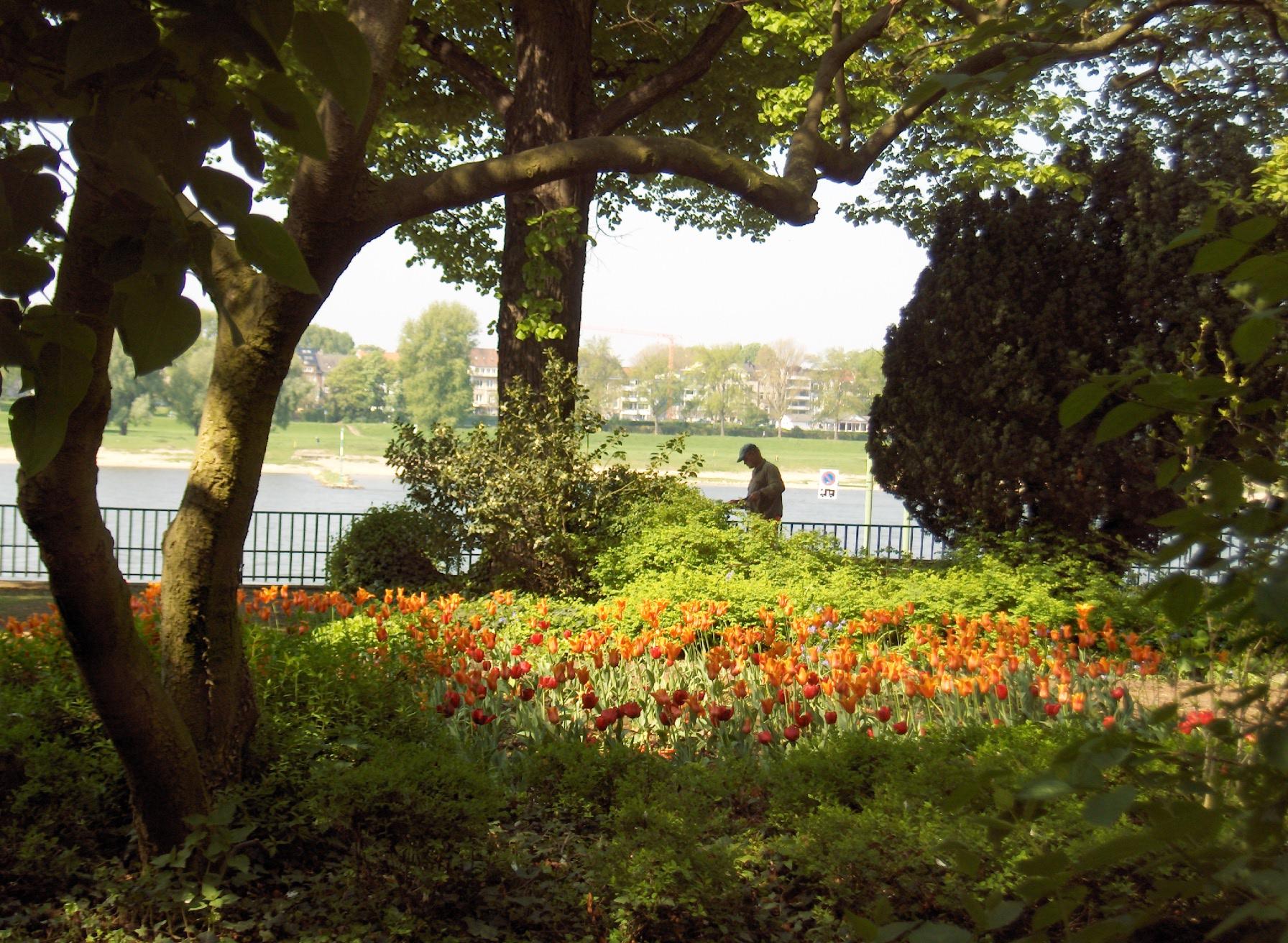 Garten Schoenheit